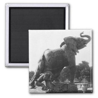 Elefante joven cogido en una trampa imán cuadrado