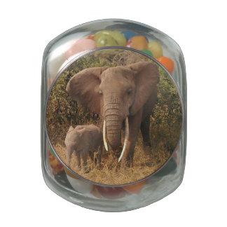 Elefante Jarrones De Cristal
