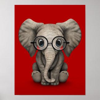 Elefante lindo del bebé con los vidrios de lectura poster