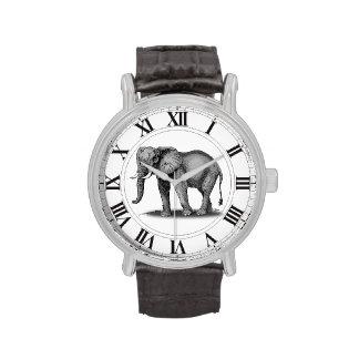 Elefante majestuoso en gris con los números relojes de pulsera