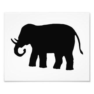 Elefante negro fotografias