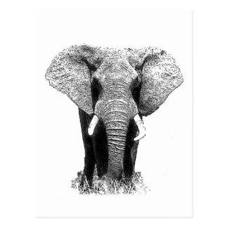 Elefante negro y blanco tarjetas postales