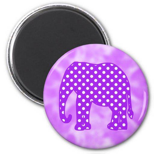 Elefante púrpura y blanco de los lunares imanes de nevera