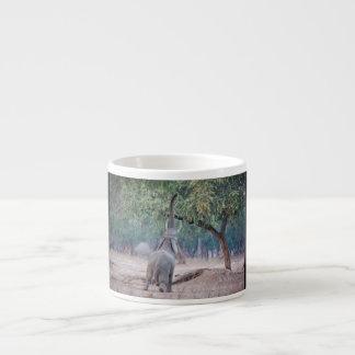 Elefante que alcanza para el árbol del acacia taza espresso