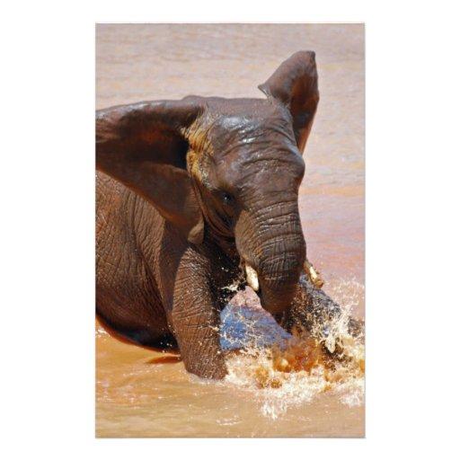 Elefante que juega con agua papeleria personalizada
