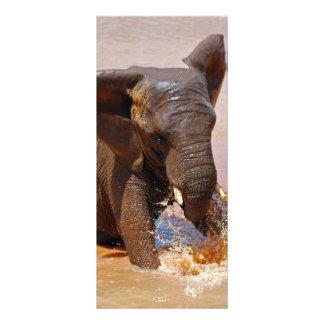Elefante que juega con agua tarjeta publicitaria a todo color