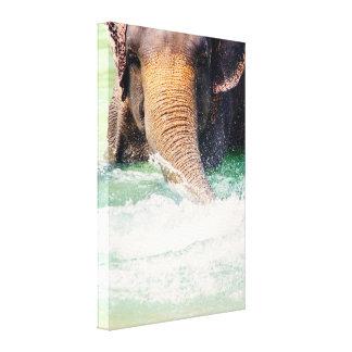 Elefante que salpica en el agua, fotografía animal impresion de lienzo