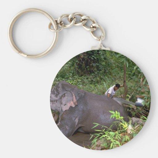 Elefante que se lava en el río, Tailandia septentr Llavero Redondo Tipo Pin