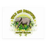 Elefante salvaje y hermoso postal