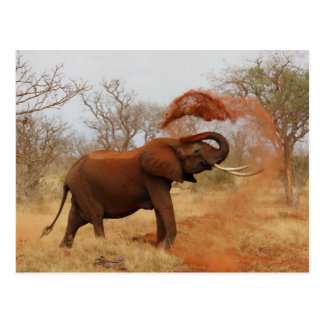 Elefante Postal