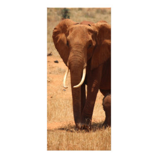 Elefante Lona Personalizada