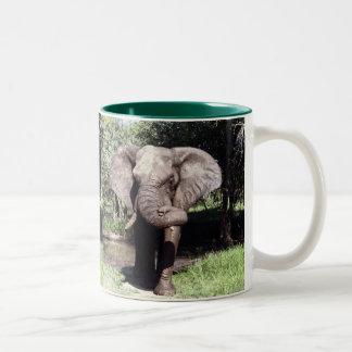 Elefante Tazas De Café