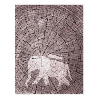 Elefante urbano postal