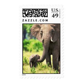 Elefante y bebé franqueo