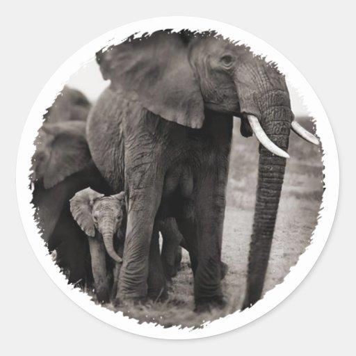 Elefante y elefante del bebé etiqueta redonda