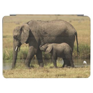 Elefantes africanos en la piscina de agua cover de iPad air