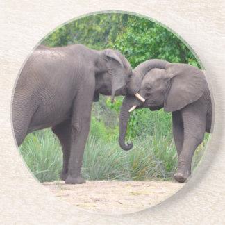 Elefantes africanos que obran recíprocamente posavaso para bebida