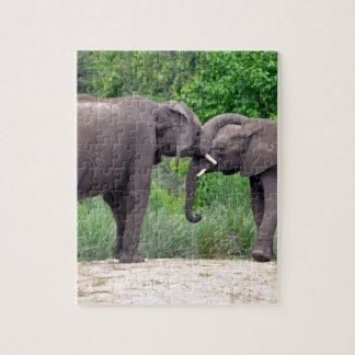 Elefantes africanos que obran recíprocamente puzzle