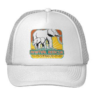 Elefantes animales del rescate gorras de camionero