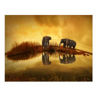 Elefantes asiáticos en Tailandia bajo puesta del Postal