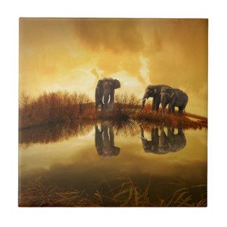 Elefantes Azulejo Cuadrado Pequeño