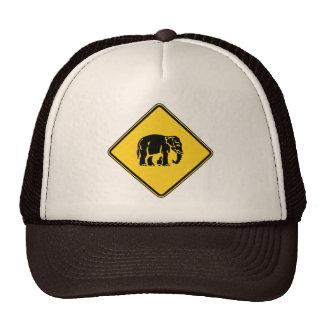 Elefantes de la precaución que cruzan el ⚠ gorro de camionero