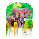 Elefantes del safari tarjetas postales