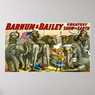 Elefantes del vintage de Barnum Bailey Póster