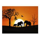 Elefantes en la puesta del sol postales