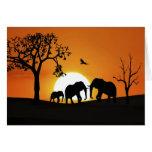 Elefantes en la puesta del sol tarjeta