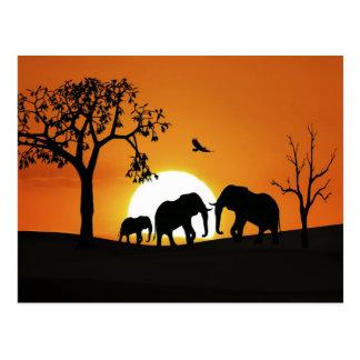 Elefantes en la puesta del sol postal