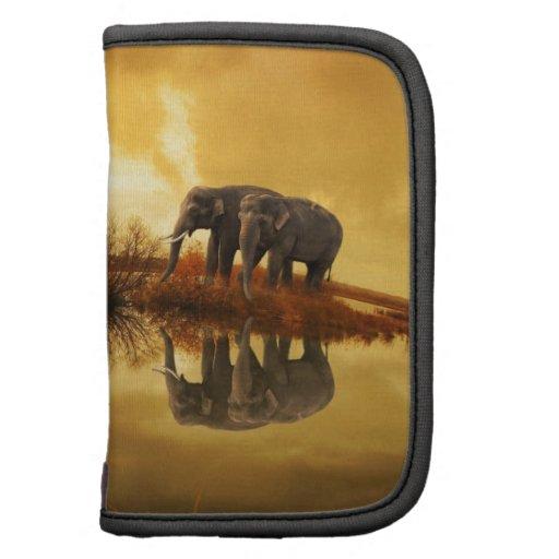 Elefantes Organizador