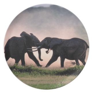 Elefantes Plato Para Fiesta