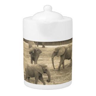 Elefantes - por la sabana del helecho