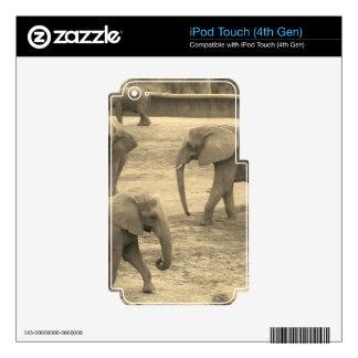 Elefantes - por la sabana del helecho calcomanías para iPod touch 4G