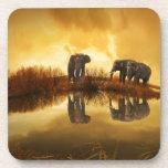 Elefantes Posavasos
