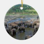 Elefantes que se bañan en el río Sri Lanka Adorno Navideño Redondo De Cerámica