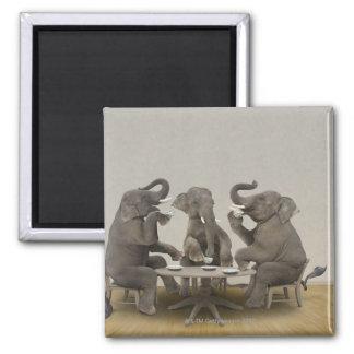 Elefantes que tienen la fiesta del té imán cuadrado