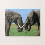 Elefantes Rompecabeza Con Fotos