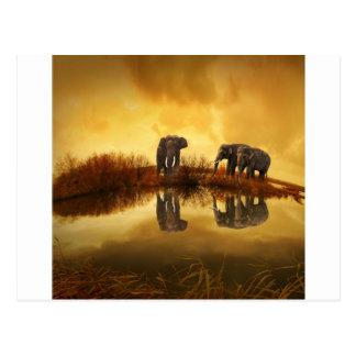 Elefantes Postal