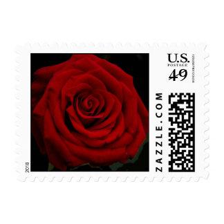 Elegancia del rosa rojo sellos