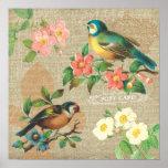 Elegancia lamentable rústica de los pájaros y de l impresiones