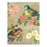 Elegancia lamentable rústica de los pájaros y de l tarjeta postal