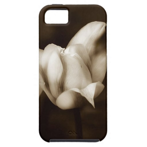 Elegancia photographed by Tutti iPhone 5/5S Cases