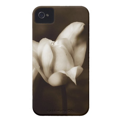 Elegancia photographed by Tutti Case-Mate iPhone 4 Case