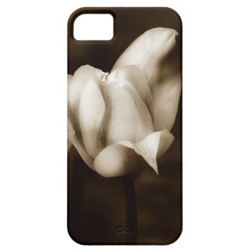 Elegancia photographed by Tutti iPhone 5/5S Covers