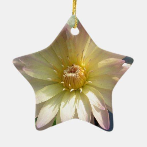 Elegancia poner crema con un tacto del rosa adorno navideño de cerámica en forma de estrella
