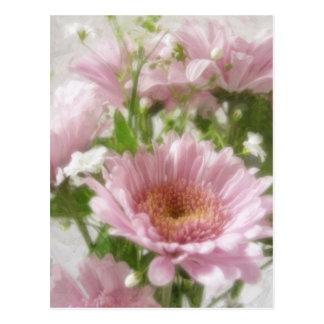 Elegancia rosada de los crisantemos 5 tarjetas postales