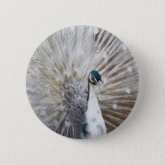 Elegant Albino Peacock Pinback Button