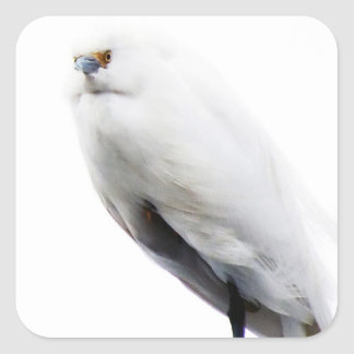 Elegant and Beautiful Snowy Egret Square Sticker